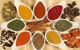 Spice Download